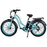 """MaxFoot Electric Bike, 750W 48V 26"""" Fat Tire Women Mountain Ebike"""