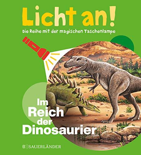 Im Reich der Dinosaurier: Licht an! (Licht an! Die Reihe mit der magischen Taschenlampe, Band 1)