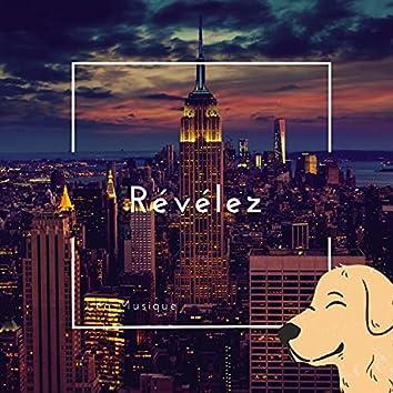 Révélez (feat. Ronisia)