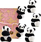 SUSHAFEN 6Pcs Finger Panda Plush Panda Clips Curtain Holder Stand Note Clip Photo Holder Stand Chinese Style Souvenir Cute Panda Plush Toy Finger Kids Toy,Home Decoration Plant Pots Bonsai Craft Decor
