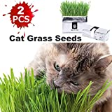 Jnancun Cat Grass Wheat Grass Sand Barley Grass Seeds Grow Your Own Pet Grass from Seed Indoor in Just 7 Days(2Pack)