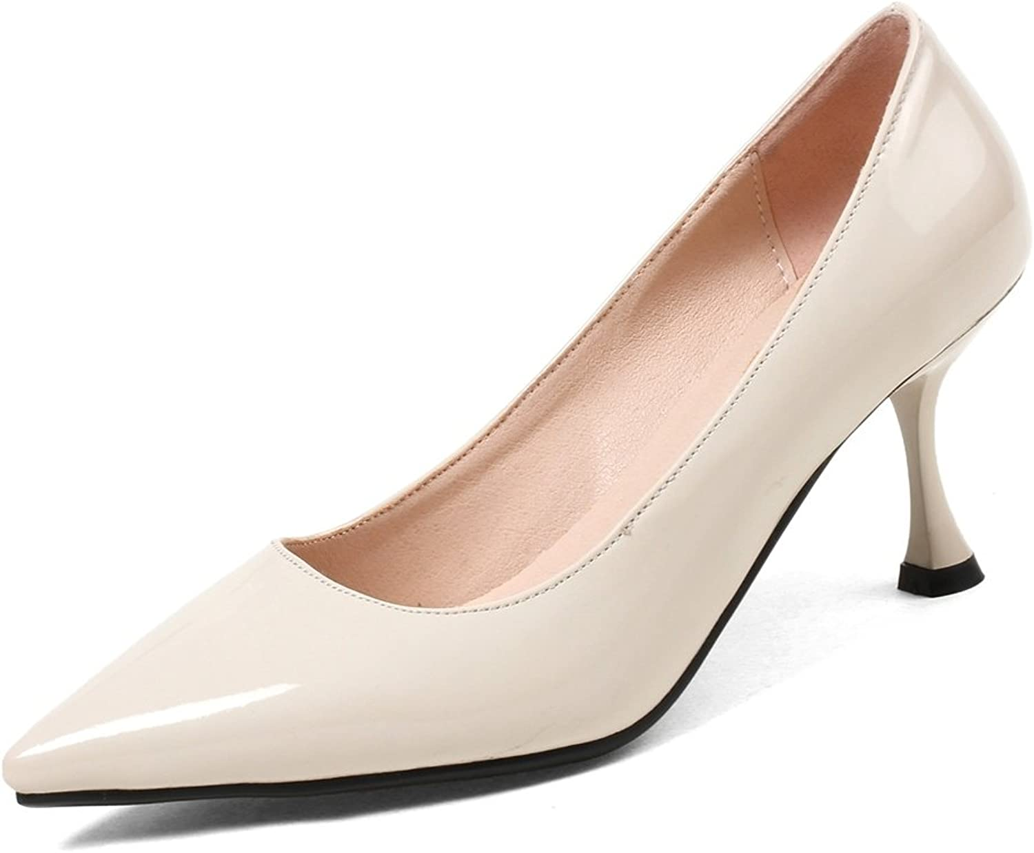 DecoStain Women's Elegant Pointed Toe Patent Leather Slip-on High Thin Heels Daily Working Pumps shoes