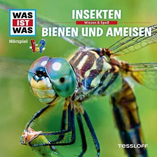 Insekten / Bienen und Ameisen: Was ist Was 37