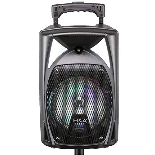 %26 OFF! 8 Inch Bluetooth Speakers Party Woofer and Tweeter Fm Radio, USB Sd Card Input