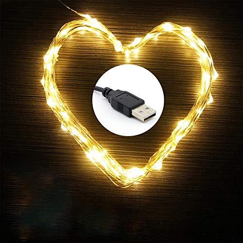 8-functie USB positieve en negatieve lichtsnoer, met afstandsbediening koperdraadsnaar-USB8-functie 20 M 200 lampjes warm wit