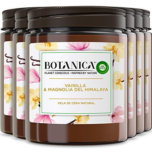 Botanica de Air Wick - Vela Aromática Perfumada, Ambientador esencia para casa con aroma a Vainilla y Magnolia del Himalaya - Pack de 6