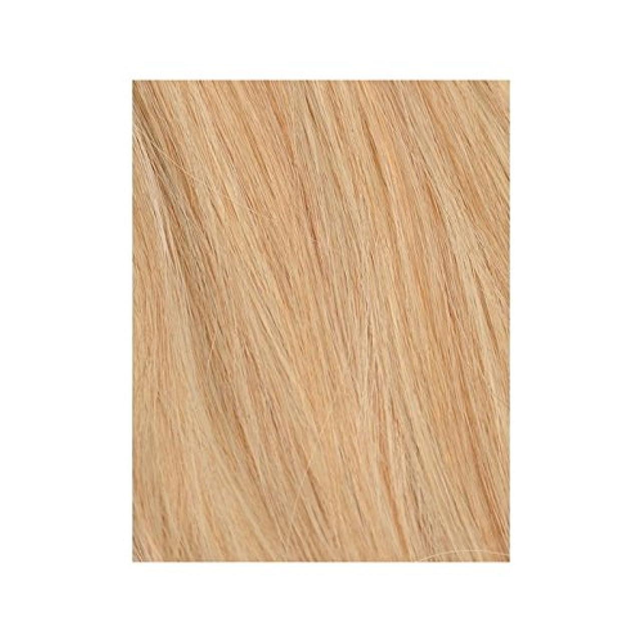 平行変色するたらいBeauty Works 100% Remy Colour Swatch Hair Extension - Boho Blonde 613/27 (Pack of 6) - 自由奔放に生きる金髪27分の613 - 美しさは、100%レミーの色見本ヘアエクステンションの作品 x6 [並行輸入品]