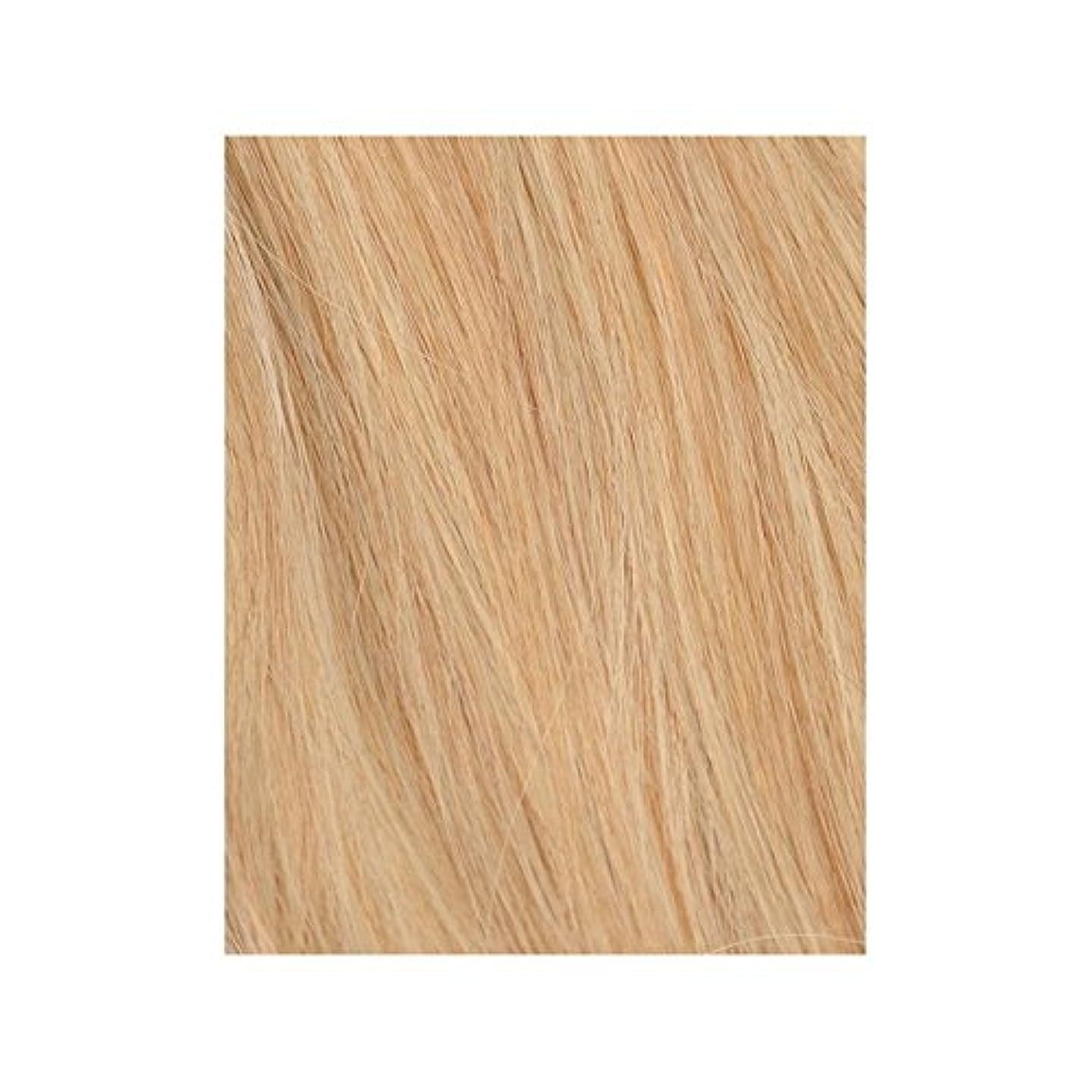 肯定的靴望ましい自由奔放に生きる金髪27分の613 - 美しさは、100%レミーの色見本ヘアエクステンションの作品 x2 - Beauty Works 100% Remy Colour Swatch Hair Extension - Boho Blonde 613/27 (Pack of 2) [並行輸入品]