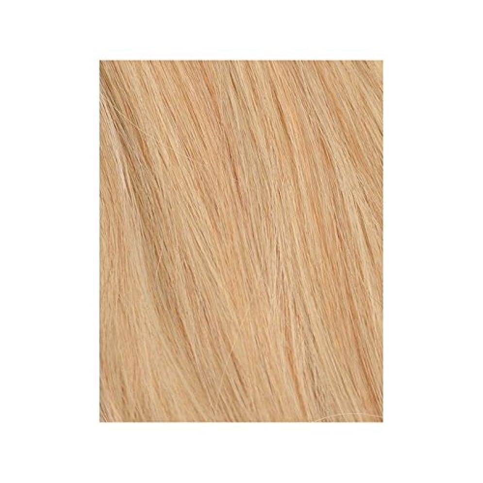 自由奔放に生きる金髪27分の613 - 美しさは、100%レミーの色見本ヘアエクステンションの作品 x2 - Beauty Works 100% Remy Colour Swatch Hair Extension - Boho Blonde 613/27 (Pack of 2) [並行輸入品]