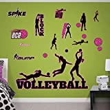 FATHEAD Volleyball Collection Real Decals