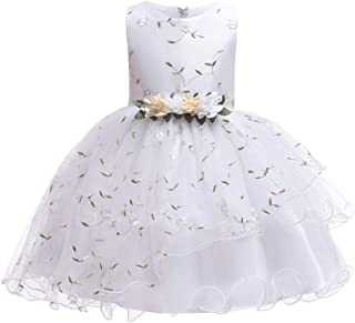 LvRao Girls' Princess Dress Floral Embroidered Wedding Pageant Party Gown Prom Bridesmaid Dress
