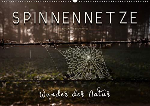 Spinnennetze - Wunder der Natur (Wandkalender 2021 DIN A2 quer)