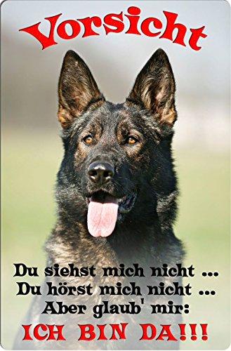 +++ Deutscher SCHÄFERHUND - Metall WARNSCHILD Schild Hundeschild Sign - DSH 35 T2