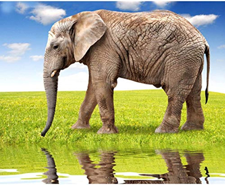 venta caliente en línea HPCAGLL HPCAGLL HPCAGLL Pintura Diamante 5D DIY Diamante Completo Punto de Cruz Orilla del río Elefante Dormitorio Sala de EEstrella decoración Pintura  grandes ahorros