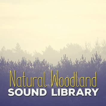 Natural Woodland Sound Library