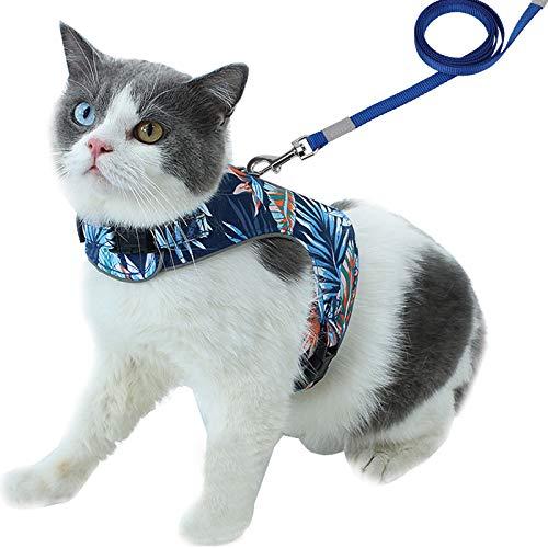 PETTOM Arnés con Correa para Gatos,Chaleco Arnes Cuerda Reflectante Seguridad Ajustable para Gato Cachorro Mascota Pequeño,Transpirable Cómodo Suave con Hebilla para Caminar Antiescape Viaje(Azul M)