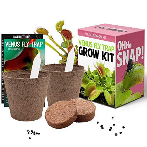 Venus Fly Trap Seeds Growing Kit - All in One Carnivorous Plant Growing Kit Gift Grow Your Own Dionaea Muscipula