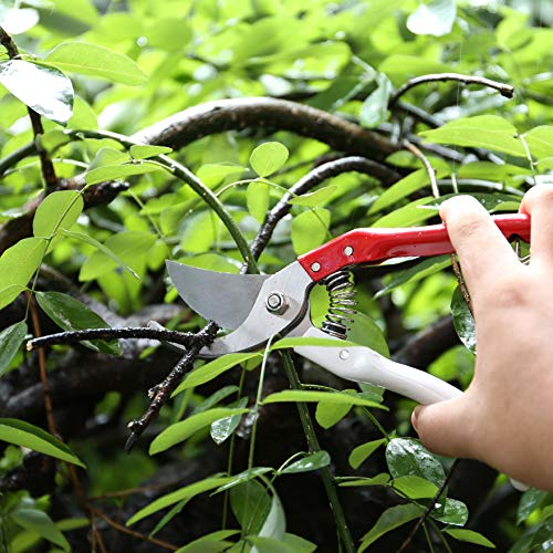 Avikoit Professional Planting Tools Garden Pruning Shears Plants Trimmer Hand Branch Pruner Gardening Tool Clippers Comfortable Ergonomic Handles Adjustable Shear Range Excellent Cutting Capacity
