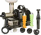 Lexen Extractor de Jugo electrico Healthy Juicer (Plata o Negro)