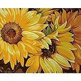 ZXDA Frameless DIY Pintura por número Flor Pintura al óleo Pintada a Mano Dibujo sobre Lienzo decoración del hogar A8 50x65cm