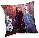 Jerry Fabrics Frozen – Cojín – La reina del hielo – Anna & Elsa – Muñeco de nieve Olaf – 40 x 40 cm...