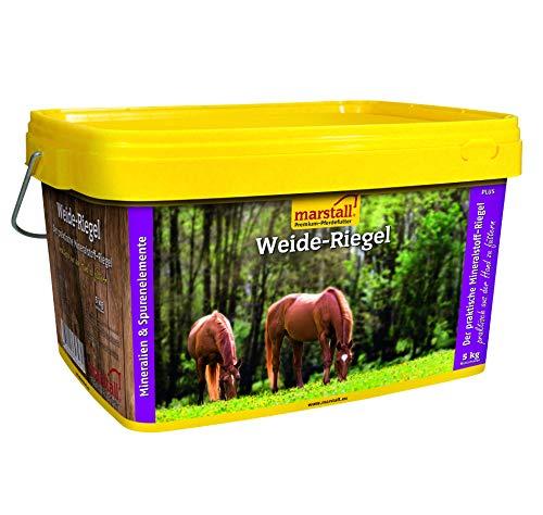 marstall Premium-Pferdefutter Weide-Riegel -saisonal, 1er Pack (1 x 5 kilograms)