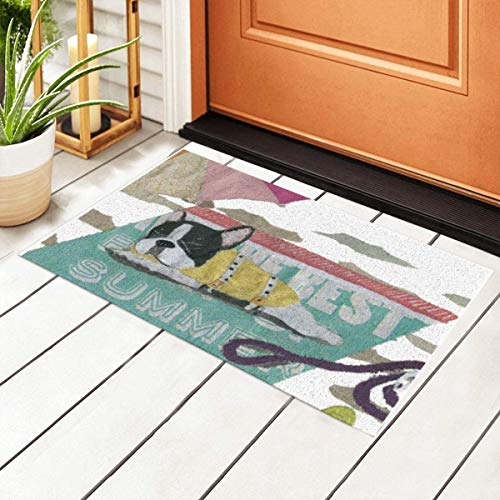 Front Door Mat Welcome Mats,French Bulldog Black and White Pied Frenchie Entrance PVC Doormat with Nonslip Waterproof Backing,23.6X15.7 inch – Low Profile, Non Slip Rubber Backing