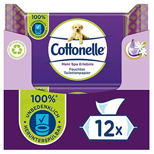 Cottonelle - Papel higiénico húmedo (seda y jazmín, 12 x 42 toallas, 2,16 kg)