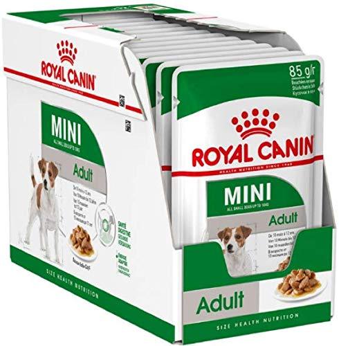 Royal Canin Nassfutter für Erwachsene, 24 Packungen à 85 g, ideal für kleine Rassen, ausgewachsene Hunde ab 10 Monaten bis 12 Jahren, Plus 6 cm Trixie Gummiballspielzeug mit Wurfgriff
