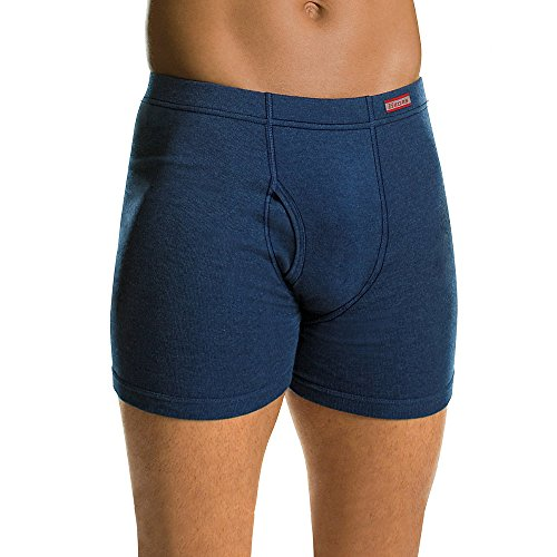 Hanes CSWB Boxer Briefs 4-Pack,Assorted Blues:Small(28-30)