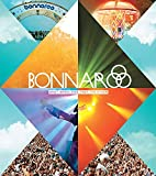 Bonnaroo: What, Which, This, That, The Other