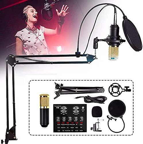 BJH Juego de micrófono con Tarjeta de Sonido, 12 Efectos de Sonido y 6 Modos de Efectos para transmisión en Vivo, se Puede conectar a un teléfono móvil o computadora, para grabación y transmisió