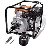 vidaXL Pompa d'Acqua con Motore a Benzina 80 mm 6,5 HP Drenaggio Irrigazione