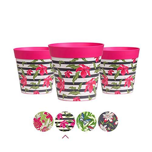 Hum Flowerpots Kleine Blumentöpfe, 3er-Set, bunte Kräuterpflanzgefäße für drinnen / draußen Saftige Töpfe 15 cm x 15 cm