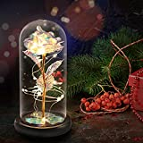 VUDECO Beauty and The Beast Rose in Glass Dome Rose Forever Rose in Glass Rose Flower Gift Enchanted...