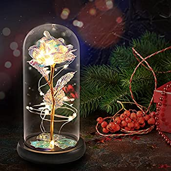 VUDECO Beauty and The Beast Rose in Glass Dome Rose Forever Rose in Glass Rose Flower Gift Enchanted Galaxy Rose Flower Gift Gold Flowers LED Rose Gift for Her Colorful Artificial Flower Rose Gift