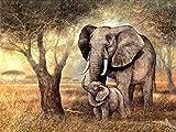 5D DIY diamante pintura bebé elefante Kits taladro completo cuadrado bordado Animal arte imagen de diamantes de imitación regalo decoración del hogar 40 * 50 2