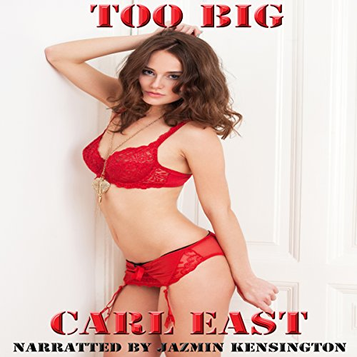 Too Big audiobook cover art
