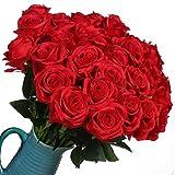 Veryhome 10 pièces Artificielle Roses Fleurs De Soie Faux Bouquets Floraux pour La...