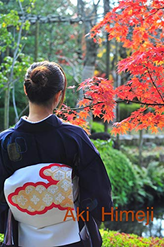 Aki Himeji: Tsumugi and autumn leaves (Castle town series Book 4) (English Edition)