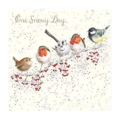 Bird Christmas Cards Amazon Co Uk