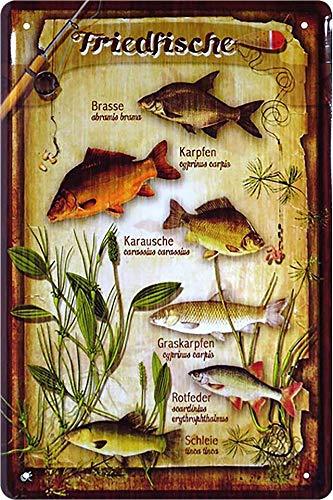 """Blechschild Spruch """"Friedfische, Brasse, Karpfe, Karausche ."""" Deko Fisch Hängeschild Türschild Metallschild Fischen Angeln Angel Verein Schild Geschenkidee Angler 20x30 cm"""