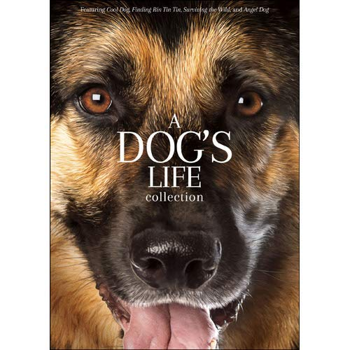 A Dog's Life Collection