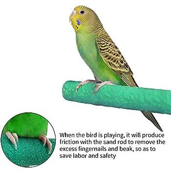 GIVBRO Lot de 3 perchoirs en bois pour perroquet, perchoir pour oiseau, perchoir pour perruche, cacatoès, perchoir pour oiseau, perroquet, ara, perruche, calopsitte, inséparable