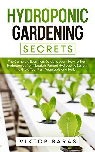 Best start a vegetable garden from scratch