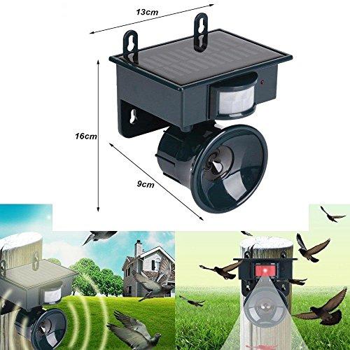 ---- Repellente ad ultrasuoni Regolabile Alimentato ad energia Solare per Animali scaccia ratti Topi Uccelli piccioni Cani Gatti