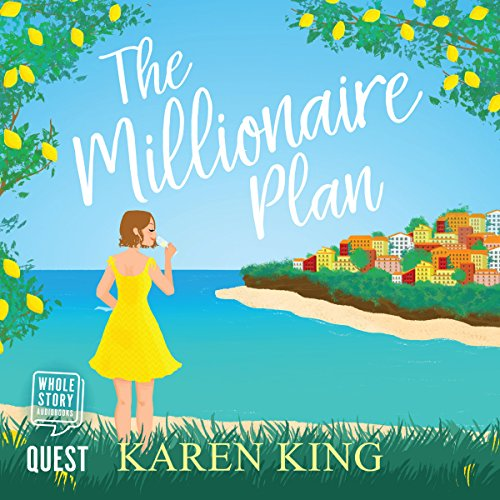 The Millionaire Plan cover art