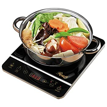 Best induction cookers Reviews