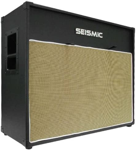 Seismic Audio - 212 GUITAR Philadelphia Mall SPEAKER 7 Ply EMPTY Birch 12