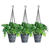 Yangbaga 3pcs Macetas Colgantes para Plantes , 15cm Colgador de Plantes con Agujeros de Drenaje y Cadena Colgante de Metal para Interior , Exterior , Balcón , Jardín (Grafito)